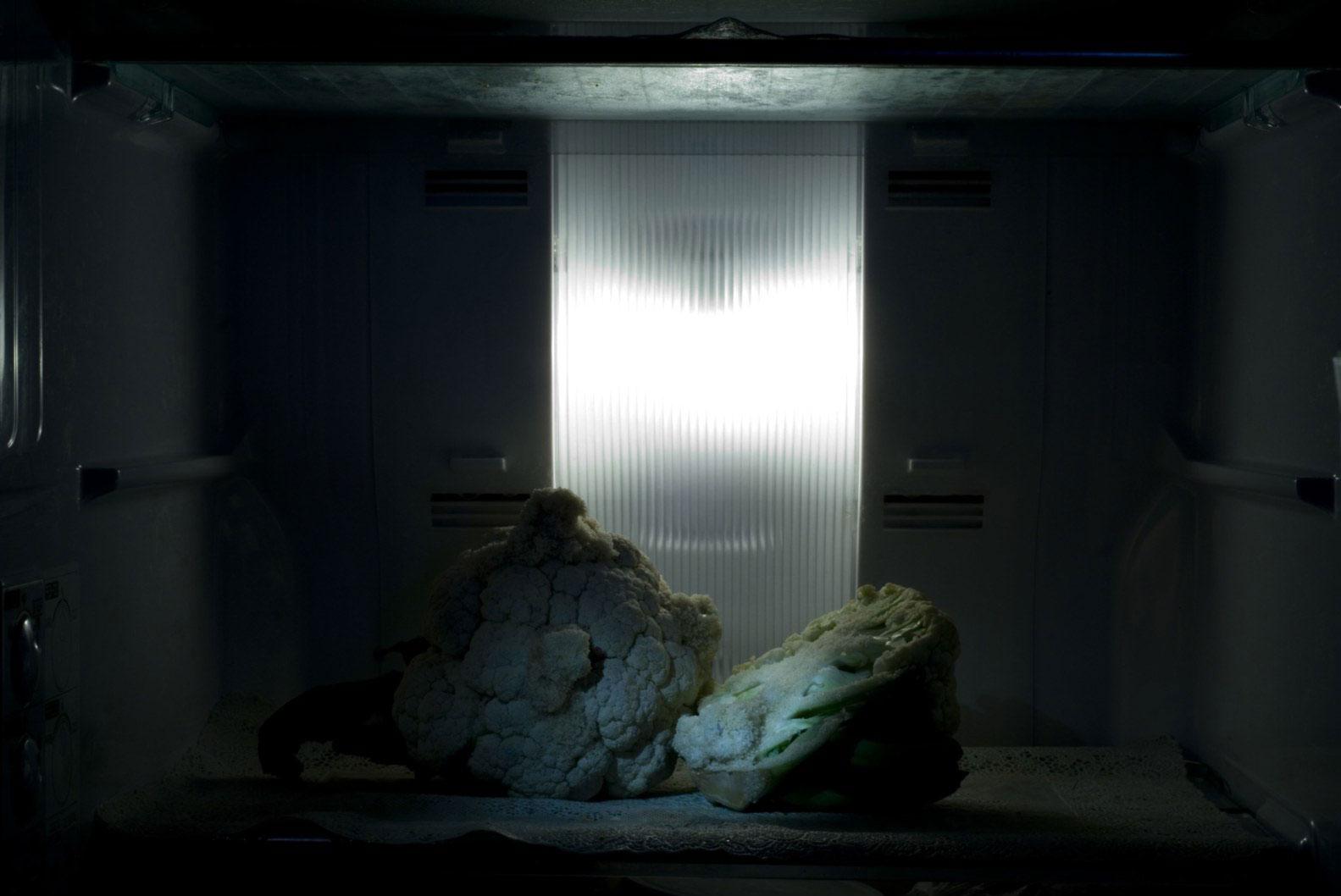 Prajakta Potnis, <em>still life,</em> 2009